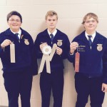 Advanced Quiz Silver - Cody Leonard, Nic Costa, Evan Nelson